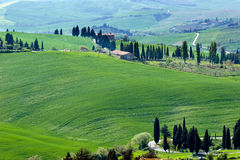 Tuscany green hills Royalty Free Stock Image