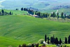 Tuscany green hills royalty free stock image