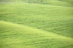 Tuscany green pastures Stock Photos