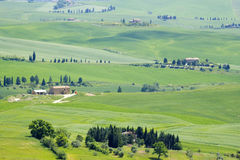 Tuscany - green typical landscape. In spring time Stock Photos