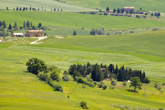 Tuscany - green typical landscape in spring time Stock Photos