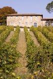 Tuscany harvesting Stock Images