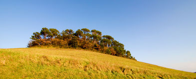 Tuscany hill stock images