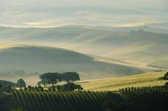 Tuscany hills Royalty Free Stock Image