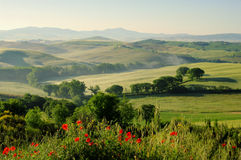 Tuscany hills Royalty Free Stock Photos