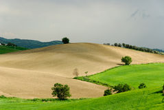 Tuscany hills. Hills and plowed fields in Tuscany Royalty Free Stock Photo