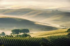 Tuscany hills Stock Photos