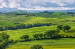Tuscany hills Stock Photography