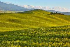 Tuscany hills. Italy. outdoor landscape Royalty Free Stock Photo