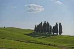 Tuscany hills landscape Royalty Free Stock Photo
