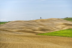 Tuscany hills landscape Stock Photo