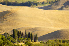 Tuscany hills in summer Royalty Free Stock Photos