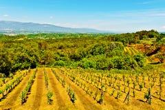 Tuscany Stock Photo
