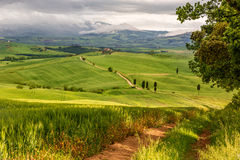 Tuscany hilly landscape near Pienza, Italy Stock Photo