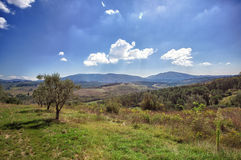 Tuscany, italian rural landscape Stock Images