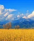 Tuscany, Italian rural landscape near Pisa royalty free stock image