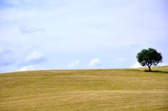 Minimalist landscape in Tuscany, Italy Stock Images