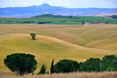 Tuscany , Italy. Tuscany is known for its beautiful landscapes, its rich artistic legacy and vast influence on high culture. Tuscany is widely regarded as the royalty free stock images