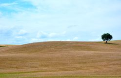 Tuscany, Italy Stock Photography