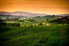 Tuscany - Italy. Landscape in Tuscany in Italy Stock Images