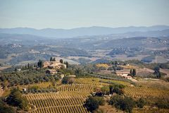 Tuscany, Italy, Europe- panoramic banner landscape with vineyards and houses. Tuscany, Italy, Europe- beautiful panoramic banner landscape with vineyards and royalty free stock photo