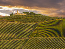 Tuscany, Italy. landscape. Vineyards in the Tuscany countryside during the fall season Royalty Free Stock Photo