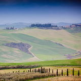 Tuscany Stock Photography