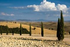 Tuscany IV. Tuscany, typical landscape in Italy stock photos