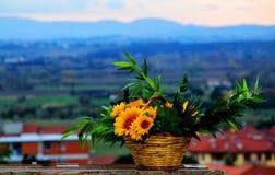 Tuscany kolory Zdjęcia Stock