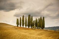 Tuscany krajobraz obrazy royalty free