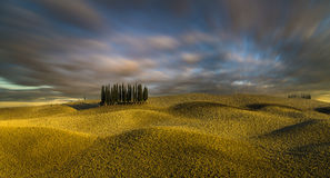 Tuscany Kształtuje teren, jesieni pole, Włochy, Val, d, Orcia fotografia royalty free
