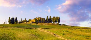 Tuscany Kształtuje teren, jesieni pole, Włochy, Val, d, Orcia obrazy royalty free