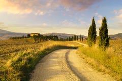 Tuscany Kształtuje teren, jesieni pole, Włochy, Val, d, Orcia zdjęcie stock