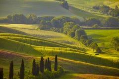 Tuscany kullar italy utomhus- liggande arkivfoton