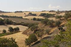 Tuscany landascape Obraz Royalty Free