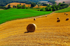 Tuscany Landscap Stock Photos