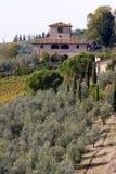 Tuscany landscape Royalty Free Stock Photography
