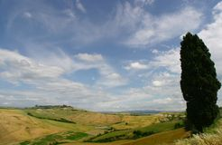 Tuscany Landscape. Tuscane countryside Stock Photography