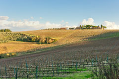 Tuscany landscape. Royalty Free Stock Photography