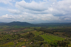 Tuscany landscape. With fields of fruit and vineyards Royalty Free Stock Image