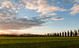 Tuscany landscape. With clouds during sunset stock photos