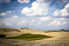Tuscany landscape. Close to Montalcino Royalty Free Stock Photo