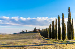Tuscany landscape. The 'Val d'Orcia' (Siena, Tuscany), with its beautiful hills. The Tuscan valley is one of the most beautiful areas of Italy Royalty Free Stock Image