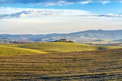 Tuscany landscape. The 'Val d'Orcia' (Siena, Tuscany), with its beautiful hills. The Tuscan valley is one of the most beautiful areas of Italy Royalty Free Stock Photos