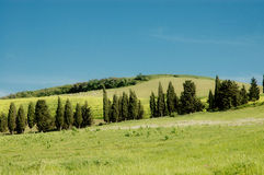 Tuscany landscape stock photo