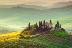 Tuscany, Landscape. A beautiful country house with the tuscan landscape in background, hills, cypress, olive trees Stock Photography