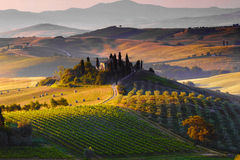 Tuscany, Landscape. A beautiful country house with the tuscan landscape in background, hills, cypress, olive trees Stock Images