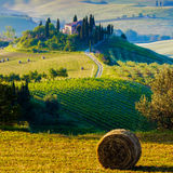 Tuscany, Landscape. A beautiful country house with the tuscan landscape in background, hills, cypress, olive trees Royalty Free Stock Photo
