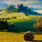 Tuscany, Landscape Royalty Free Stock Photo