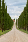 Tuscany landscape, beautiful green hills and cypress tree row sp Royalty Free Stock Photo